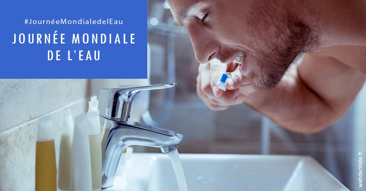 https://dr-naccache-moise.chirurgiens-dentistes.fr/Journée de l'eau 2