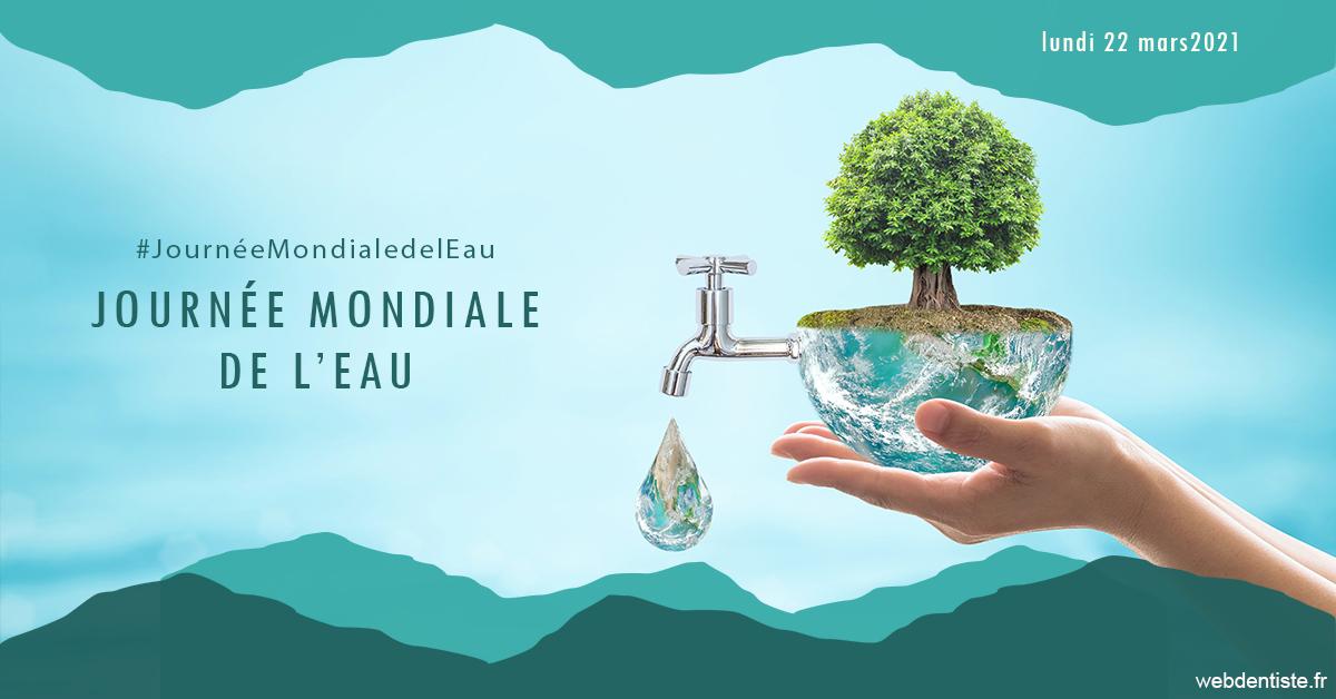 https://dr-naccache-moise.chirurgiens-dentistes.fr/Journée de l'eau 1